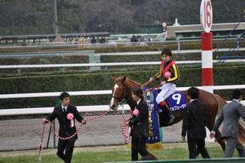 20111225オルフェーヴル.JPG