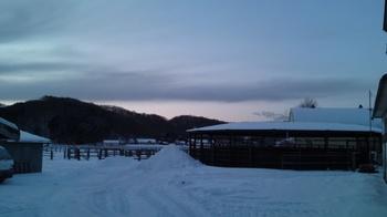 20130117夕暮れの牧場.jpg